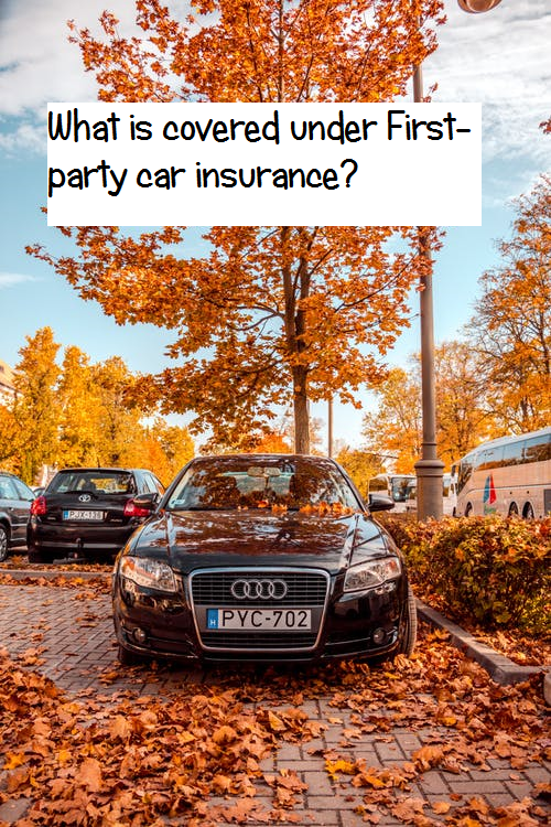 First party car insurance costs & cover